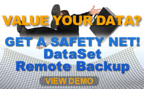 View the DataSet Backup Demo